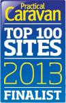 Top 100 Sites 2013